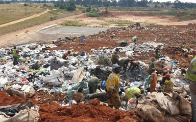 An interim relief for waste pickers and waste reclaimers